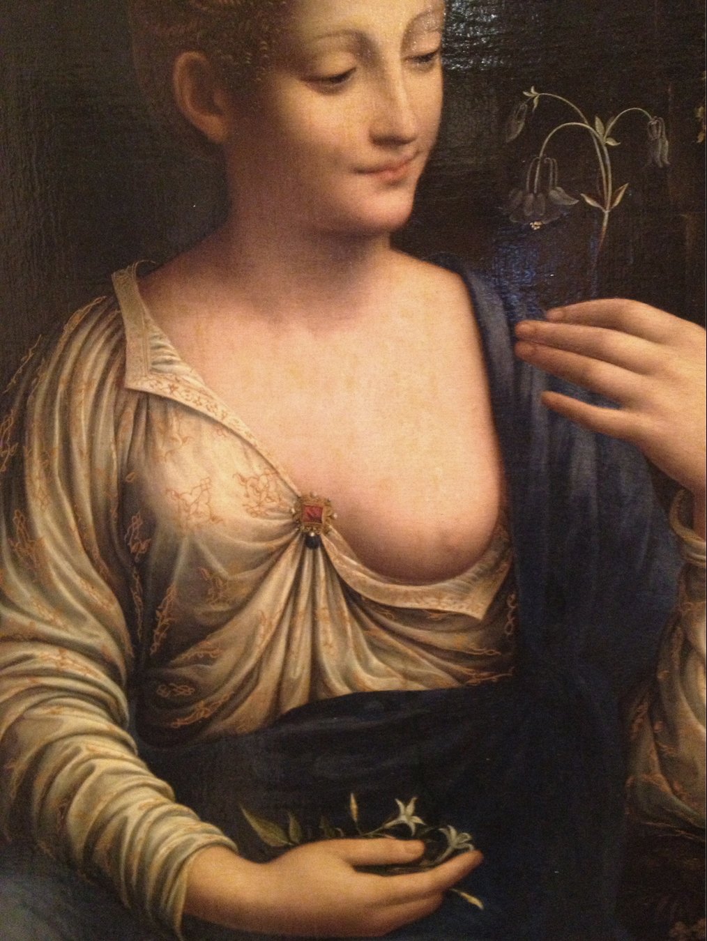 A new Da Vinci painting: La Colombina