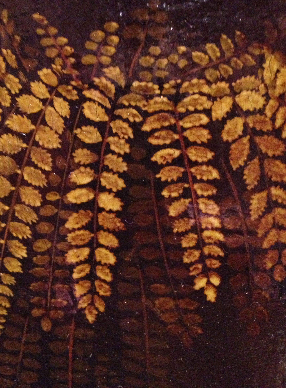 stone fern (komt nieuwe van)